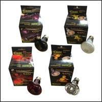 Florescent Bulbs